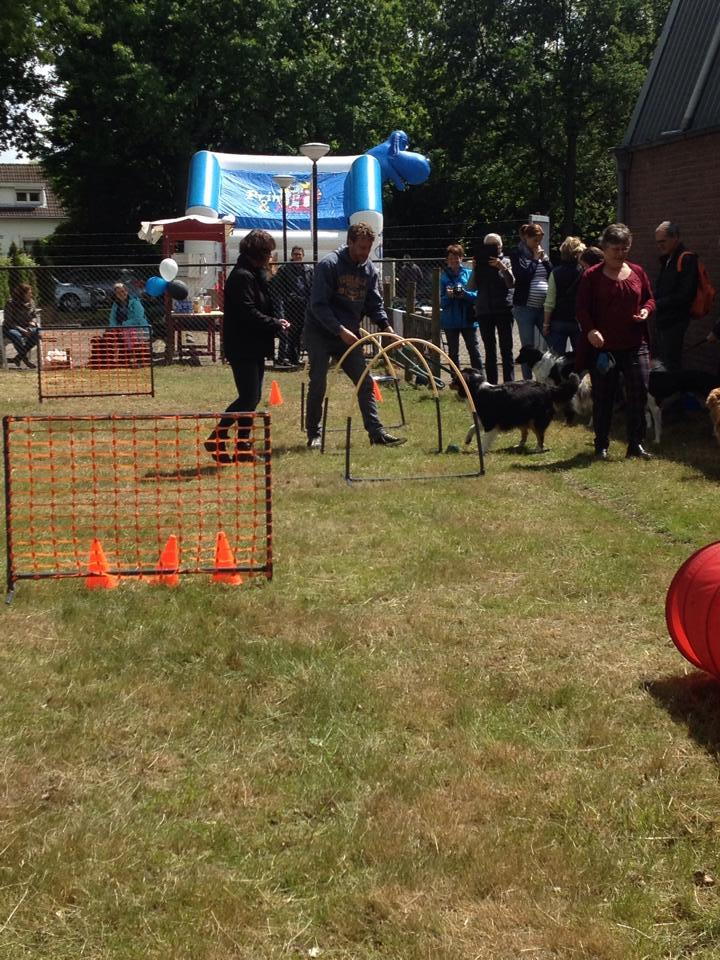 Hoopers Honden Doe Dag